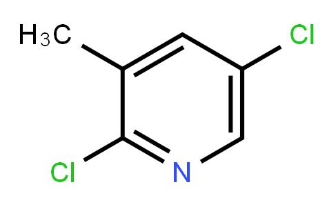 2,5-Dichloro-3-picoline