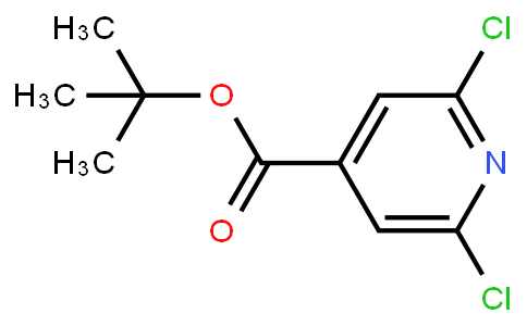 AM11055 | 75308-46-2 | Tert-butyl  2,6-dichloropyridine-4-carboxylate