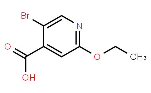 AM11272 | 1379305-67-5 | 5-Bromo-2-Ethoxy Iso Nicotinic Acid