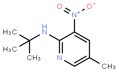 2-T-Butylamino-5-Methyl-3-Nitropyridine