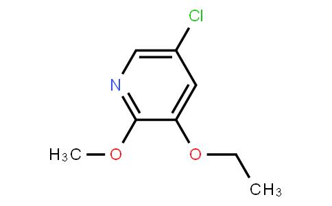 AM11664 | 1221793-67-4 | 5-Chloro-3-Ethoxy-2-Methoxypyridine