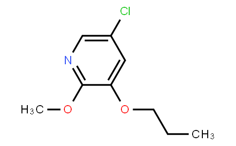 AM11668 | 1228957-11-6 | 5-Chloro-2-Methoxy-3-Propoxypyridine