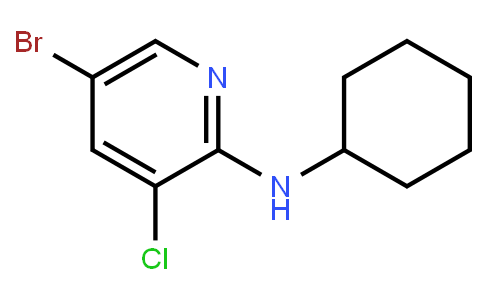 AM11747 | 1280786-98-2 | 5-Bromo-3-Chloro-2-Cyclohexylaminopyridine