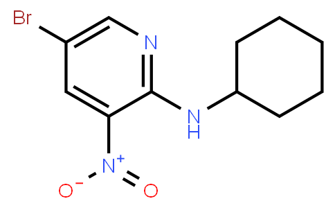 AM11857 | 1033202-38-8 | 5-Bromo-2-cyclohexylamino-3-nitropyridine