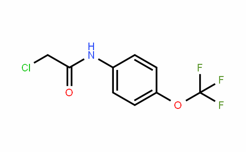 N-(Chloroacetyl)-4-(trifluoromethoxy)aniline