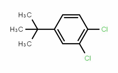 4-(tert-butyl)-1,2-dichlorobenzene