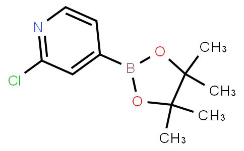 2-Chloropyridine-4-boronic acid pinacol ester