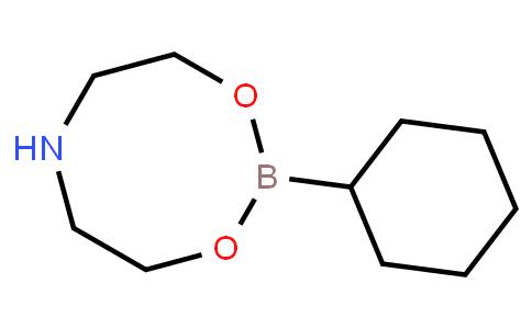 Cyclohexylboronic acid diethanolamine ester