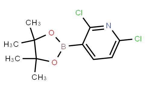 2,6-Dichloropyridine-3-boronic acid pinacol ester