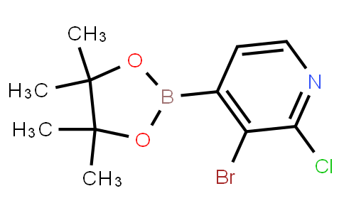 3-Bromo-2-chloropyridine-4-boronic acid pinacol ester