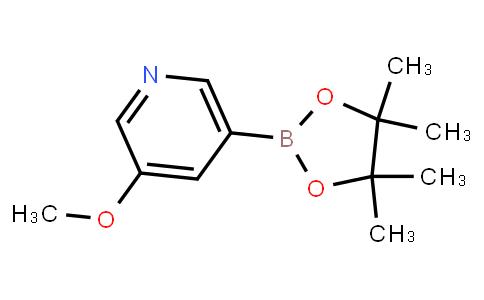 BP20181   445264-60-8   3-Methoxypyridine-5-boronic acid pinacol ester