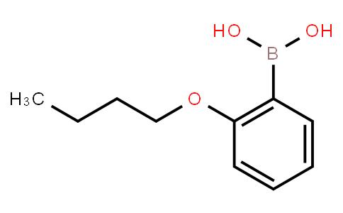 BP20374 | 91129-69-0 | 2-Butoxyphenylboronic acid