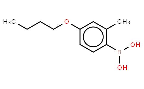 BP20386 | 845551-43-1 | 4-N-Butoxy-2-methylphenylboronic acid