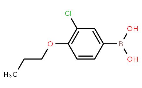 BP20422 | 480438-57-1 | 3-Chloro-4-propoxyphenylboronic acid