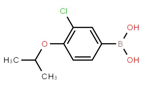BP20441   480438-56-0   3-Chloro-4-isopropoxyphenylboronic acid
