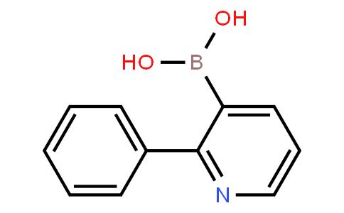 BP20457   155079-10-0   2-Phenylpyridine-3-boronic acid