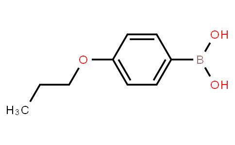BP20588   186497-67-6   4-Propoxyphenylboronic acid
