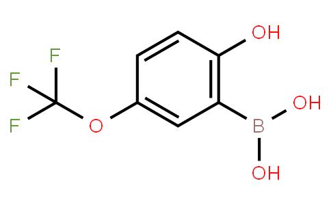 BP20797 | 1354819-26-3 | 2-Hydroxy-5-(trifluoromethoxy)phenylboronic acid