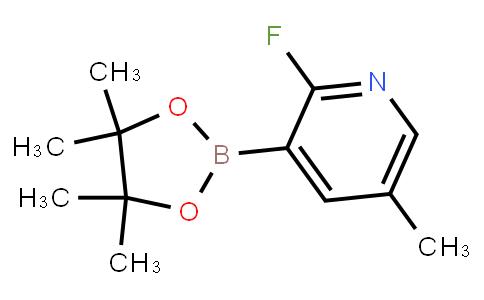 BP20973   1073371-96-6   2-Fluoro-5-methylpyridine-3-boronic acid pinacol ester