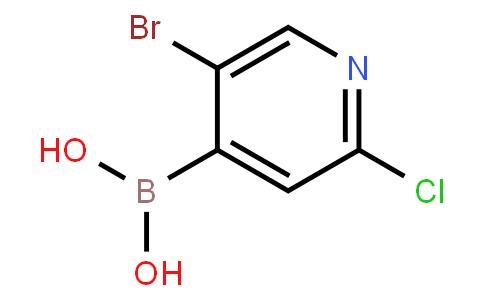 BP21090 | 871329-63-4 | 5-Bromo-2-chloropyridine-4-boronic acid