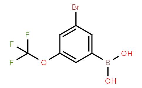 BP21096   1072951-48-4   3-Bromo-5-(trifluoromethoxy)phenylboronic acid