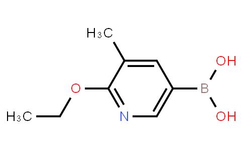 BP21118   1451391-77-7   2-Ethoxy-3-methylpyridine-5-boronic acid