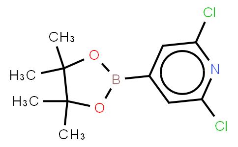 BP21135 | 408492-27-3 | 2,6-Dichloro-4-(4,4,5,5-tetramethyl-1,3,2-dioxaborolan-2-yl)pyridine