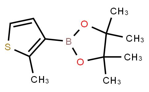 BP21208 | 910553-12-7 | 2-Methylthiophene-3-boronic acid pinacol ester