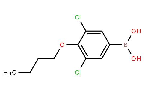 BP21260   1218790-72-7   4-Butoxy-3,5-dichlorophenylboronic acid