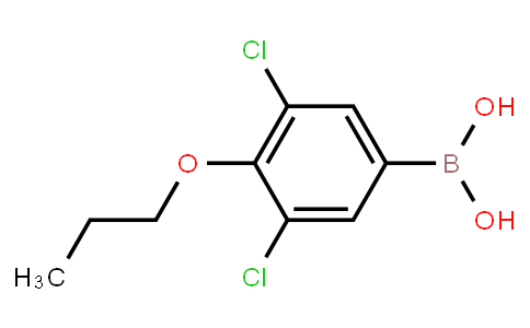 BP21261   1218790-61-4   3,5-Dichloro-4-propoxyphenylboronic acid