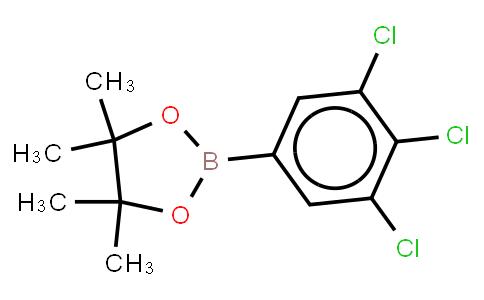BP21293   942069-95-6   3,4,5-Trichlorophenylboronic acid,pinacol ester