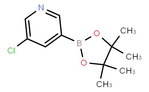 BP21348 | 865186-94-3 | 5-Chloropyridine-3-boronic acid pinacol ester