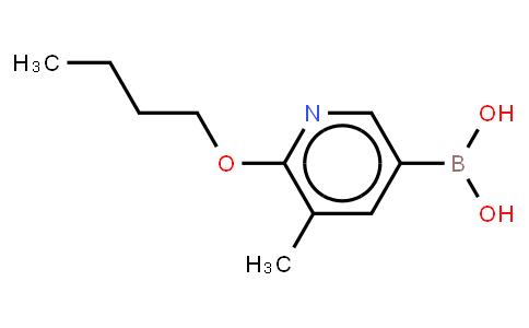 BP21369   1256355-20-0   6-Butoxy-5-methylphenylpyridine-3-boronic acid