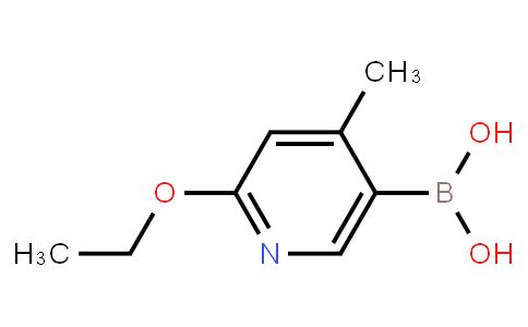 BP21380 | 1256355-37-9 | 2-Ethoxy-4-methylpyridine-5-boronic acid