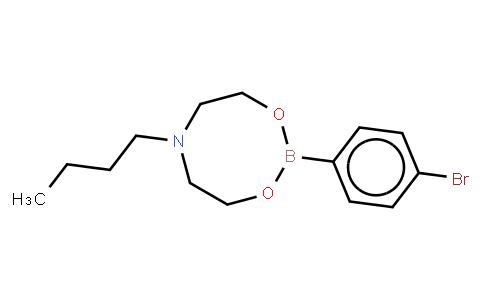 BP21387 | 1257642-68-4 | 4-Bromophenylboronic acid N-butyldiethanolamine ester