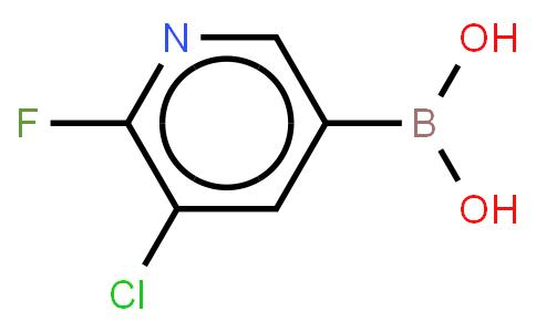 BP21486 | 1366482-32-7 | 3-Chloro-2-fluoropyridine-5-boronic acid
