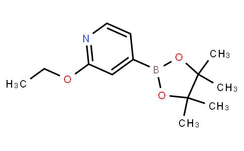 BP21490 | 1072945-01-7 | 2-Ethoxypyridine-4-boronic acid pinacol ester