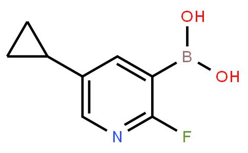 5-Cyclopropyl-2-fluoropyridine-3-boronic acid
