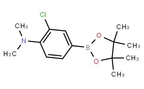 BP21610 | 3-Chloro-4-(N,N-dimethylamino)phenylboronic acid pinacol ester
