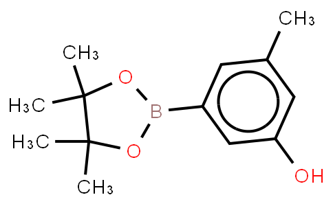 BP21618 | 889659-70-5 | 3-Hydroxy-5-methylphenylboronic acid, pinacol ester