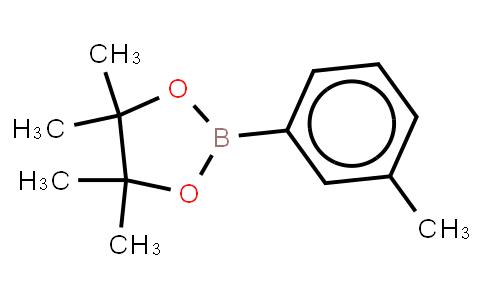 BP21638 | 253342-48-2 | 3-Methylbenzeneboronic acid, pinacol ester