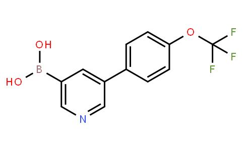 3-[4-(Trifluoromethoxy)phenyl]-pyridine-5-boronic acid