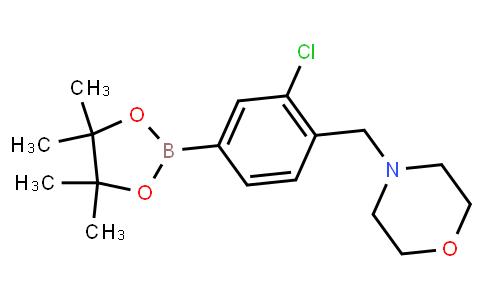 BP21686 | 1092564-33-4 | Morpholine, 4-[[2-chloro-4-(4,4,5,5-tetramethyl-1,3,2-dioxaborolan-2-yl)phenyl]methyl]-