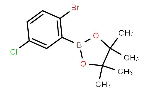 BP21753 | 1256781-63-1 | 2-(2-Bromo-5-chlorophenyl)-4,4,5,5-tetramethyl-1,3,2-dioxaborolane