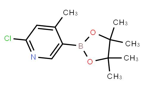 BP21755 | 1382851-54-8 | 2-Chloro-4-methyl-5-(tetramethyl-1,3,2-dioxaborolan-2-yl)pyridine