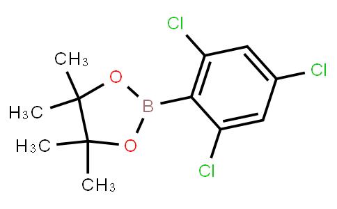 BP21772 | 69807-93-8 | 4,4,5,5-tetramethyl-2-(2,4,6-trichlorophenyl)-1,3,2-dioxaborolane