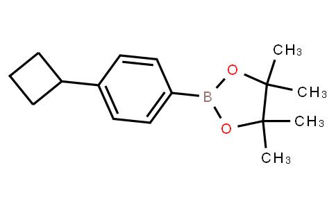 BP21785 | (4-Cyclobutylphenyl)boronic acid pinacol ester