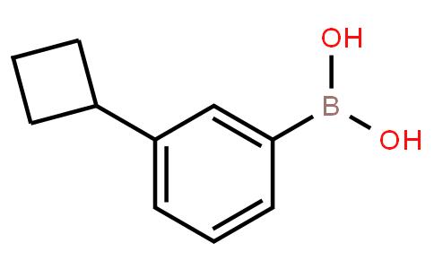 BP21807 | 1381885-38-6 | 3-Cyclobutylphenylboronic acid