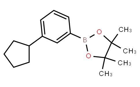 BP21810 | 3-Cyclopentylphenylboronic acid pinacol ester