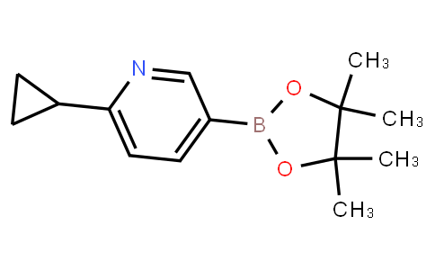 BP21897 | 893567-09-4 | 6-Cyclopropylpyridine-3-boronicacidpinacolester